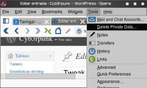 pantallazo-editar-entrada-e280b9-cyb3rpunk-e28094-wordpress-opera