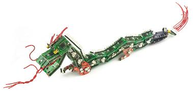 Dragon-01-L-1000