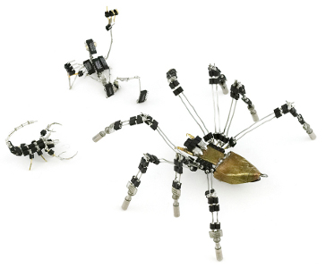 Spider-01-1000